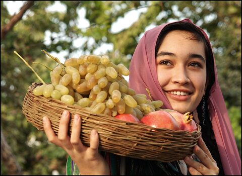 Fruits of Uzbekistan